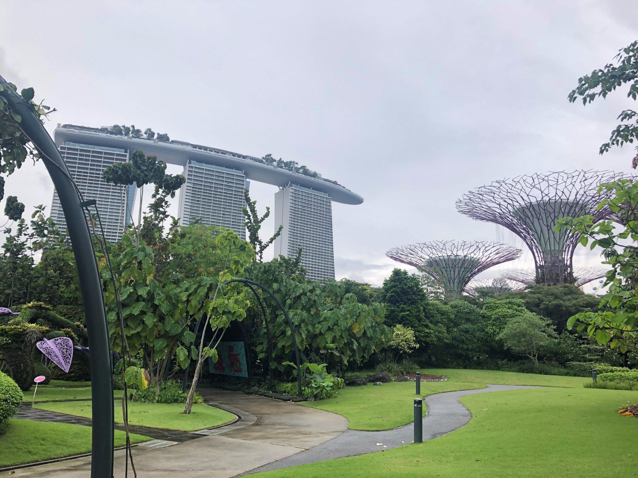APMC2019@Singapore